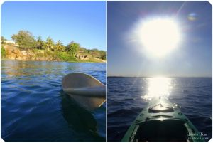 Whale-Watching-Mozambique-_00051